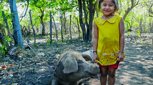 Child with her pig, Nicaragua Image: Episcopal Relief & Development